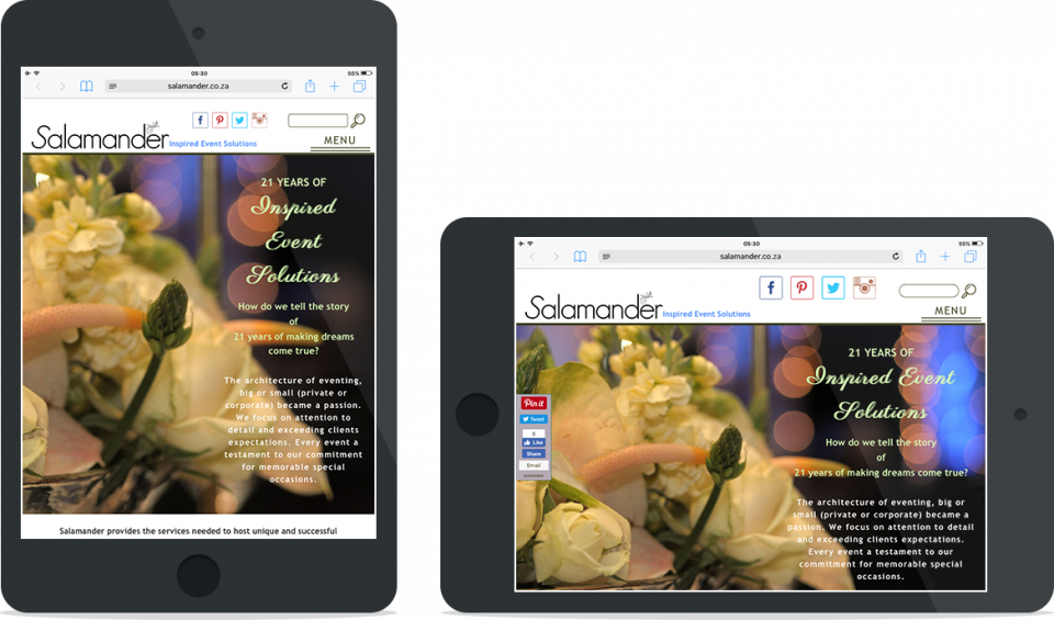 Portfolio | Salamander Design Concepts | Tablet view