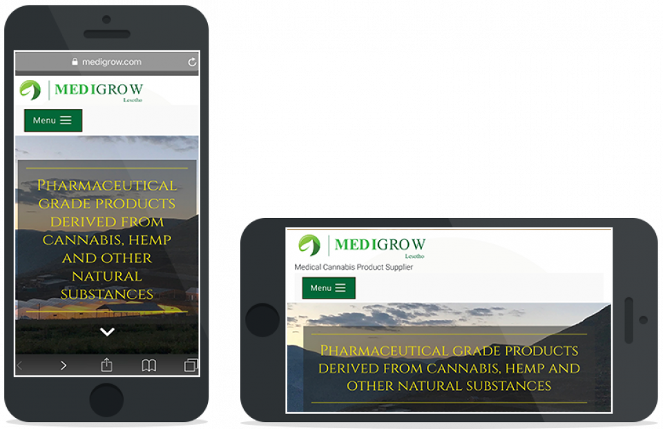 Portfolio | Medigrow Lesotho | Corportate website | Smart phone view